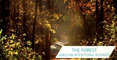 The Forest build an intentional business
