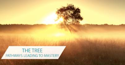 The Tree pathways leading to mastery